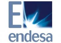 clientes ITZ__0017_logo endesa